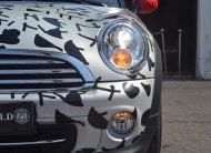 "MINI COOPER ROADSTER ""MY SUMMER VALENTINE"" BY NINA NOLTE"